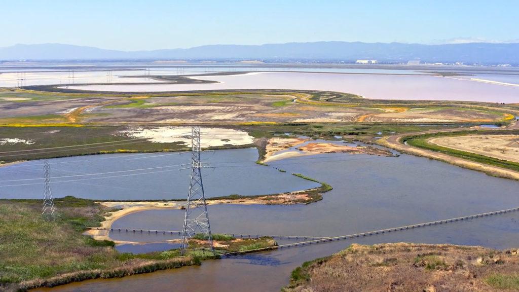 Help Save Newark Wetlands!